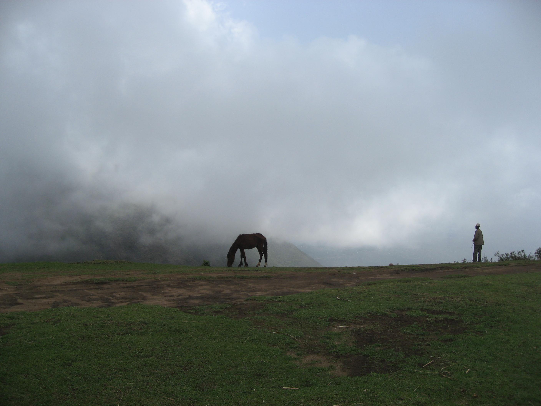 Damota mäel 30.aprill.2011
